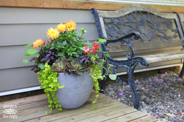 Container Garden Design stunning container garden design anyone can do - garden therapy