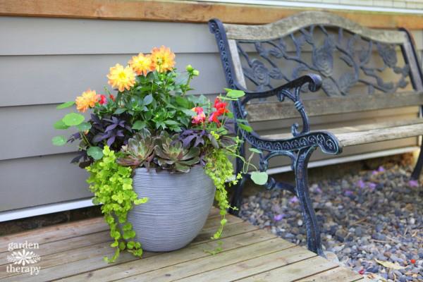 Stunning Container Garden Design Anyone Can Do Garden Therapy