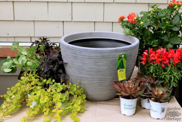 DIY Container Garden Ideas