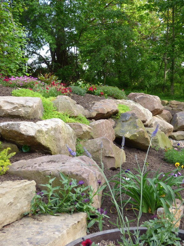 Plants change every year in this rock wall garden