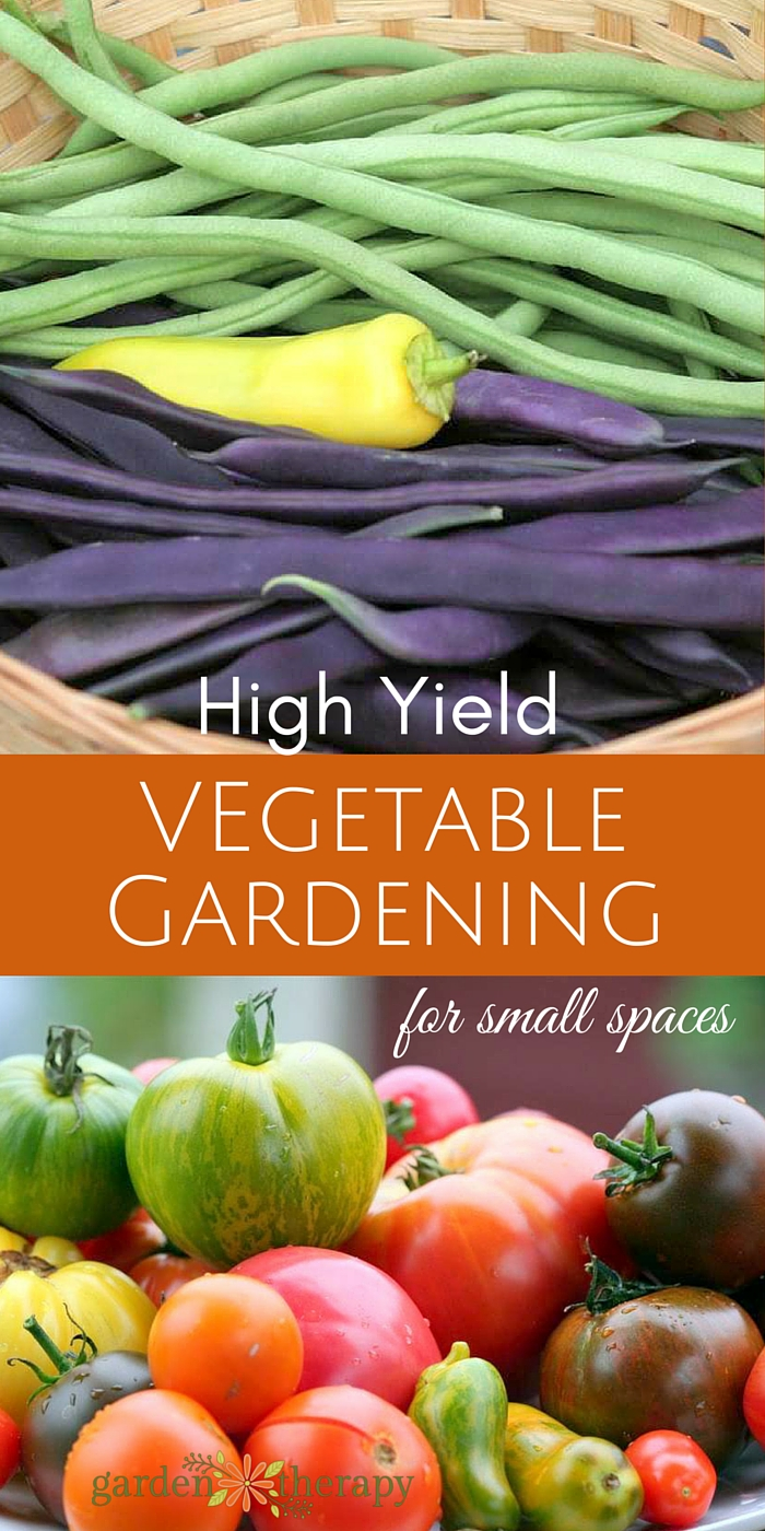 The secrets to high yield vegetable gardening in small spaces garden therapy - Growing vegetables in a small space concept ...
