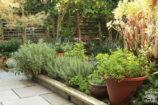 A culinary kitchen garden perfect for small spaces for Beautiful kitchen garden designs