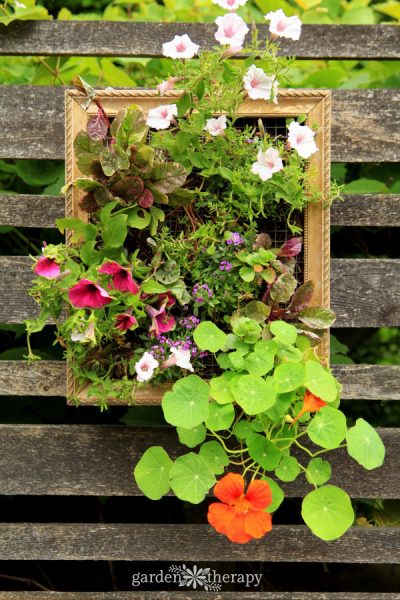 These Colorful Vertical Planters Will Add Beauty to Your Fence