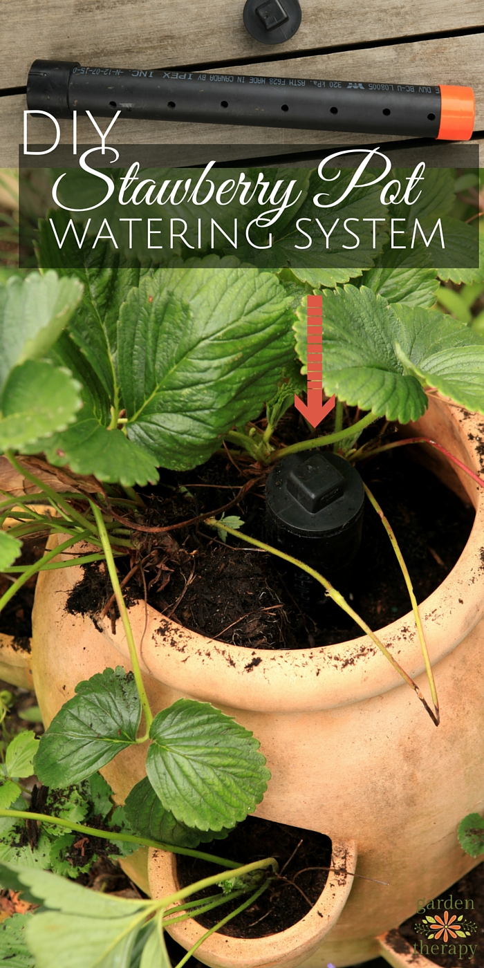 How to make a slow release irrigation tube for a strawberry pot