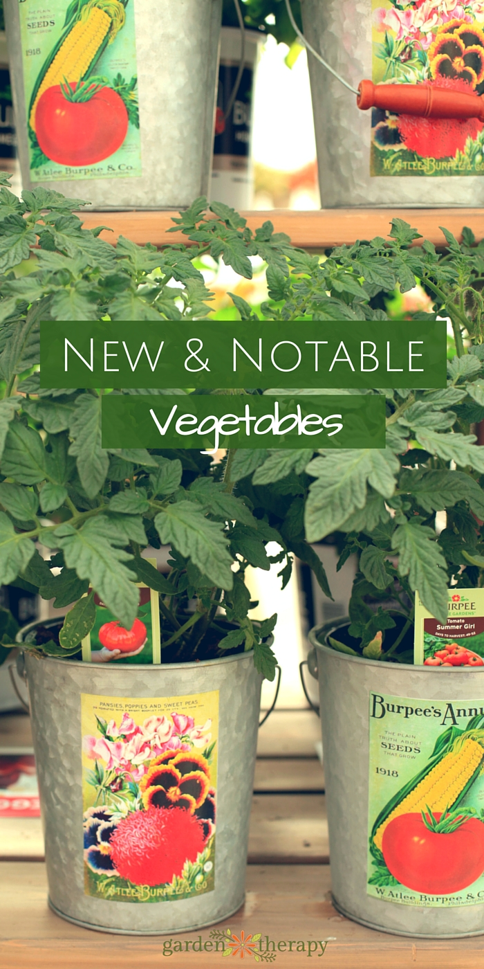 New and notable vegetable seeds and plants for the home garden