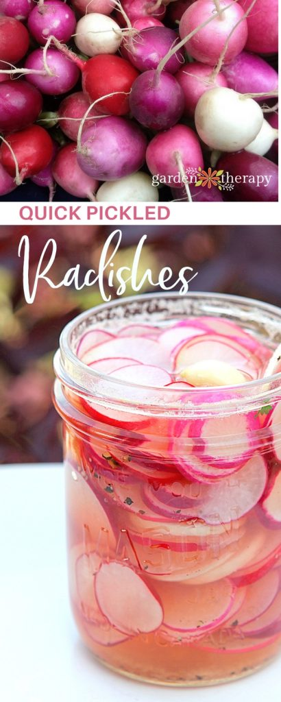 How to make quick pickled radishes