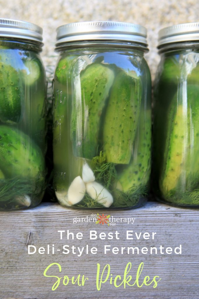 The Best Ever Sour Pickles Recipe