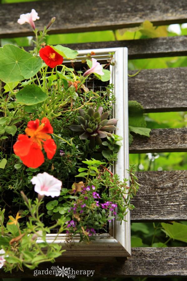 goregous vertical planters