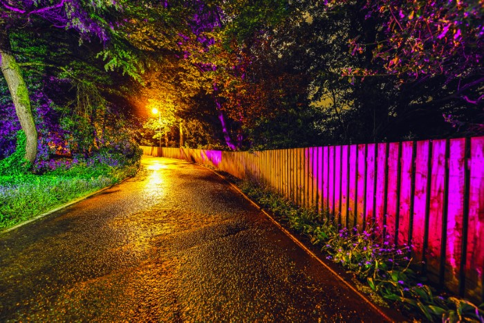 coloured accent lights on fence