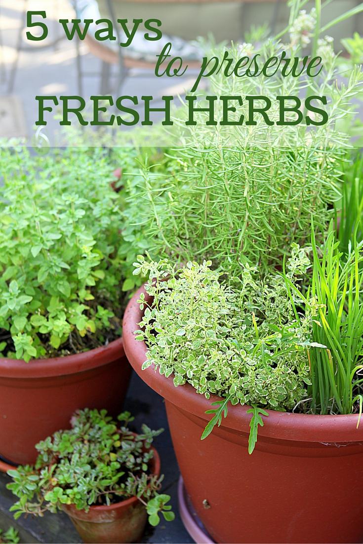 5 ways to preserve fresh herbs