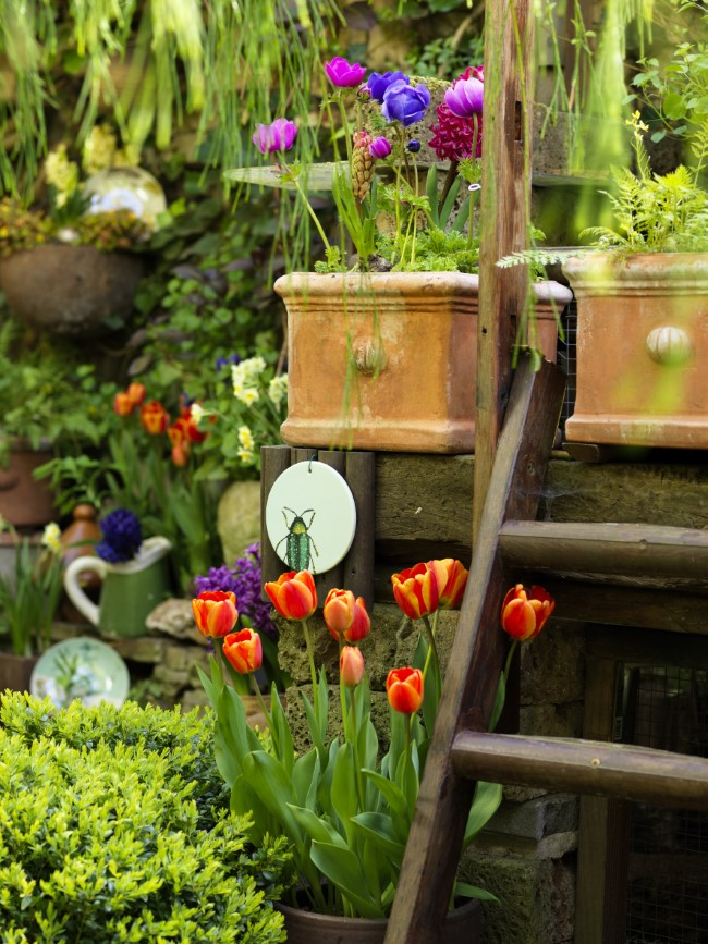 Combining Flower Bulbs in pots
