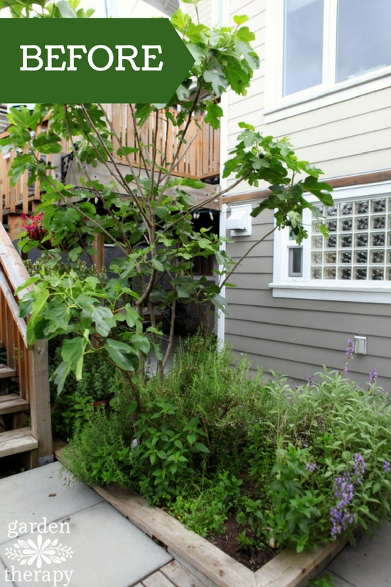 Herb Garden BEFORE renovation