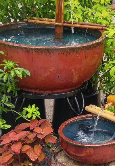 Fountains, Ponds, and Waterfalls: Choosing and Caring for a Garden Water Feature