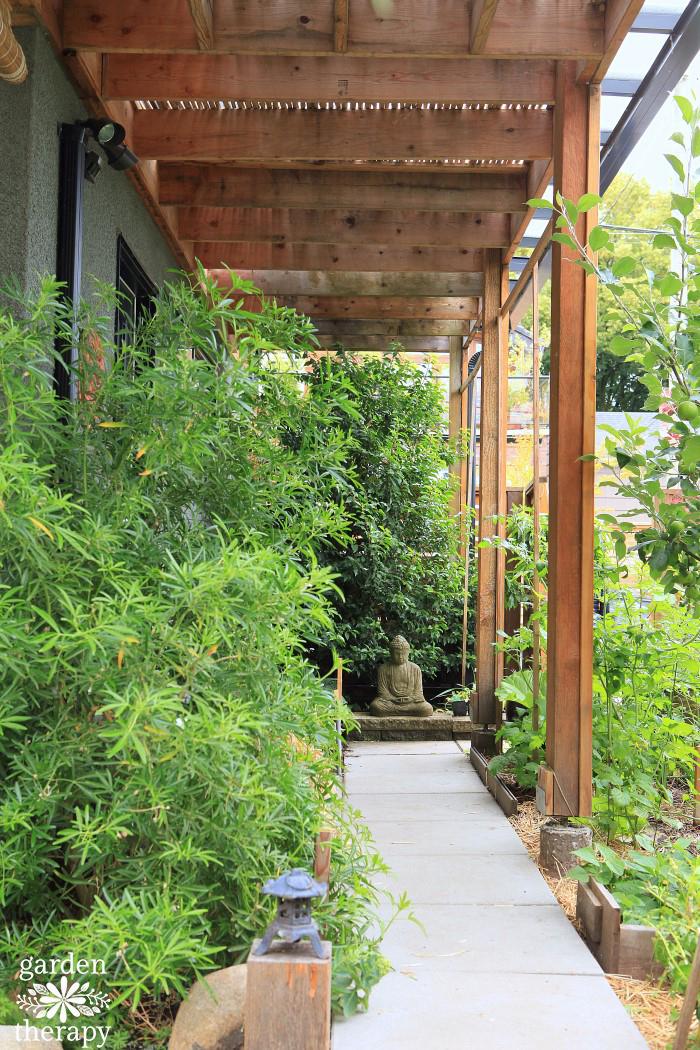 Walkway garden by studio