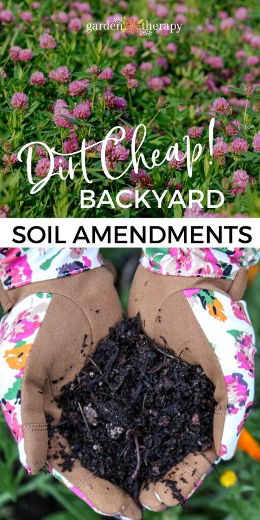 Dirt Cheap Backyard Soil Amendments For Free