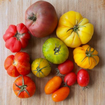 Saving Heirloom Tomato Seeds Through Fermentation