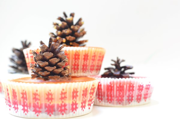 How To Make Pinecone Firestarters