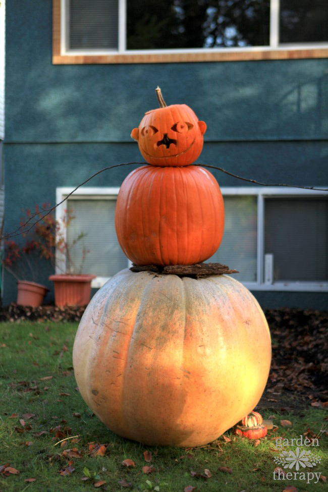 jack-o-lantern-man-aka-pumpkin-snowman-is-a-quirky-way-to-decorate-with-pumpkins