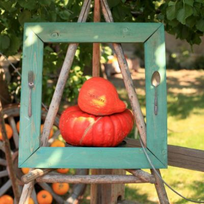 Quirky Outdoor Fall Decorating with Pumpkins and Squash