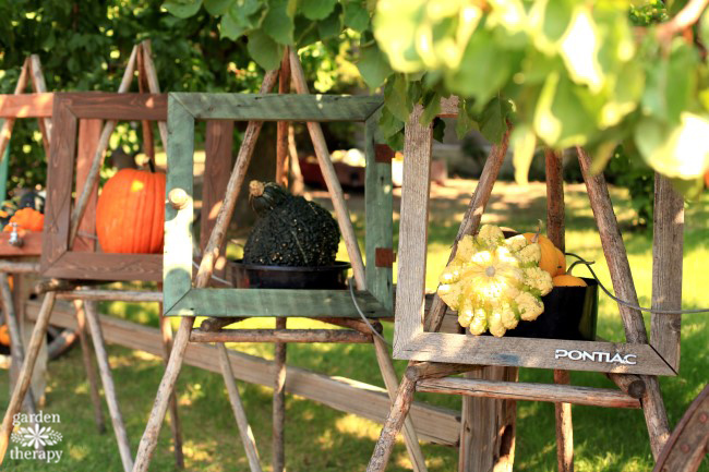 squash-framed-outddor-art-quirky-fall-decorating-with-pumpkins
