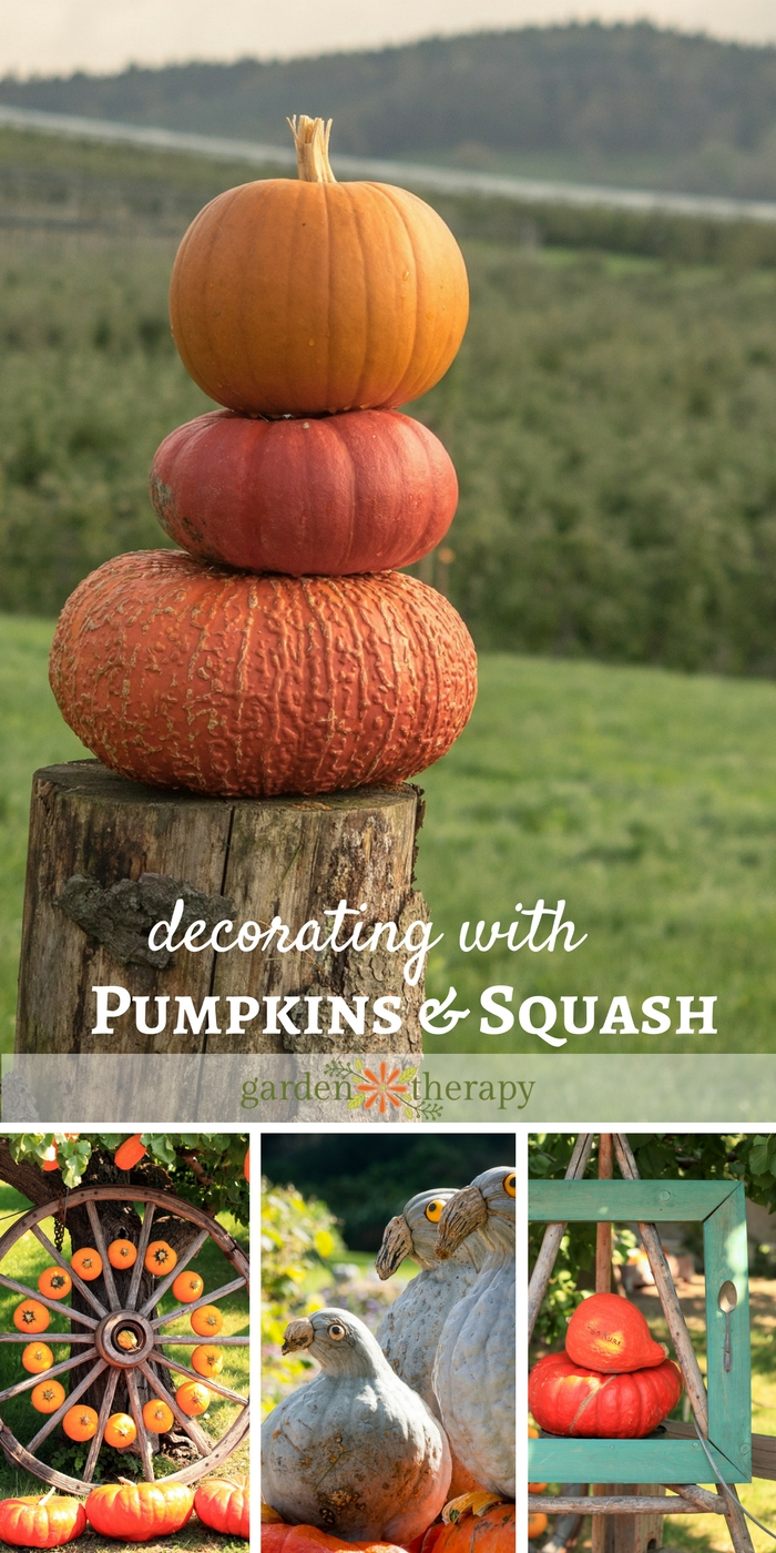 Decorating with pumpkins and squash