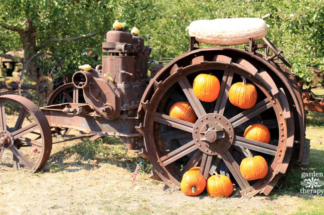 vintage-farm-machinery-quirky-fall-decorating-with-pumpkins