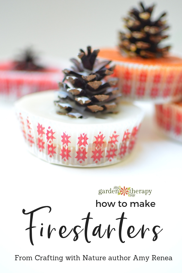 How to make Pinecone Firestarters Crafting with Nature