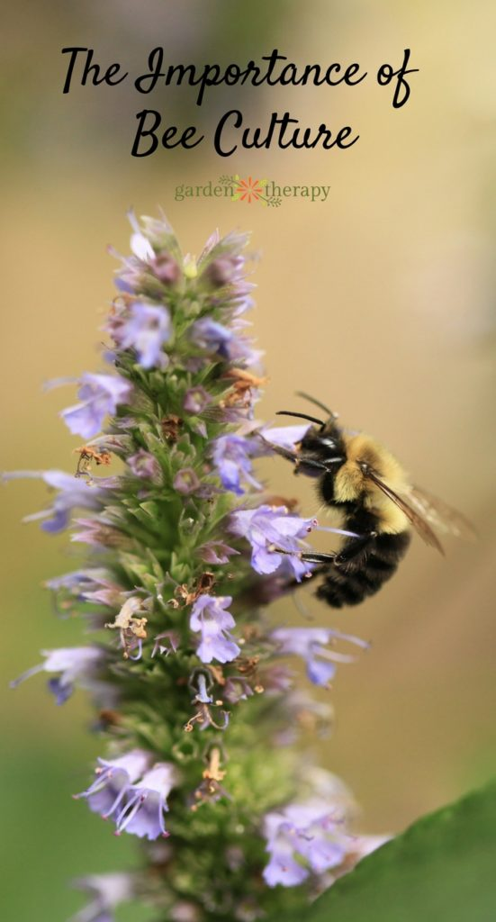 The Importance of Bee Culture: How We Can Teach the Next Generation About Bees