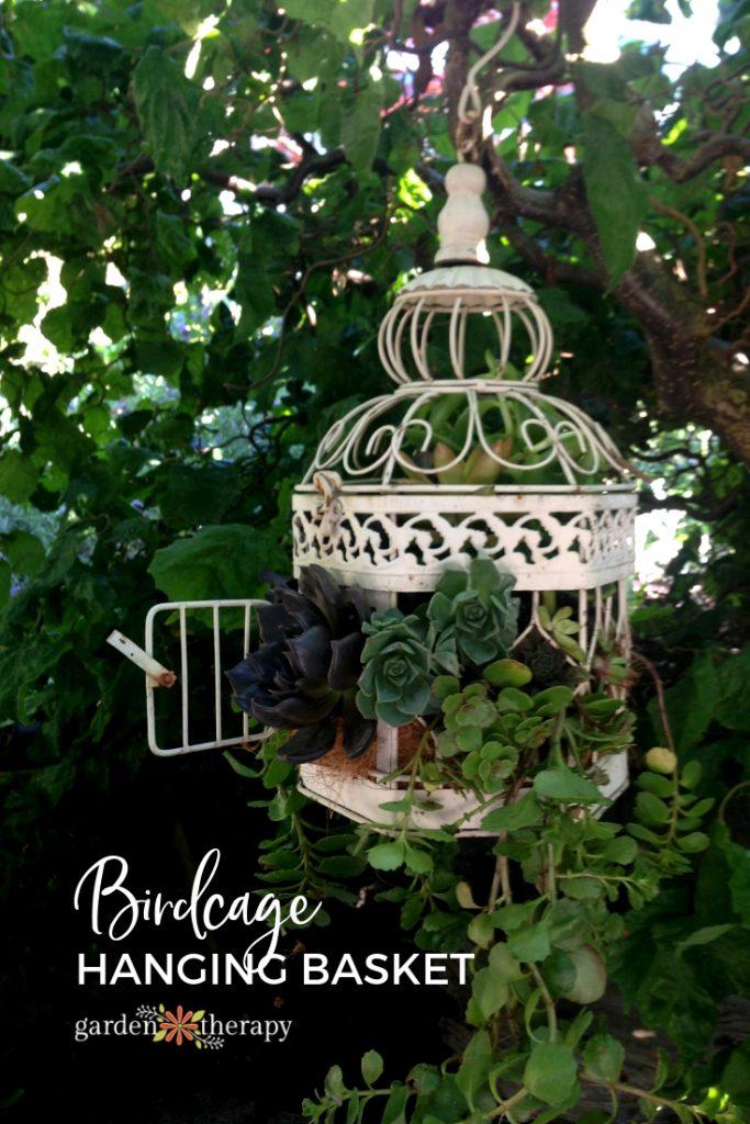 Birdcage Succulent Handing Basket DIY Instructions