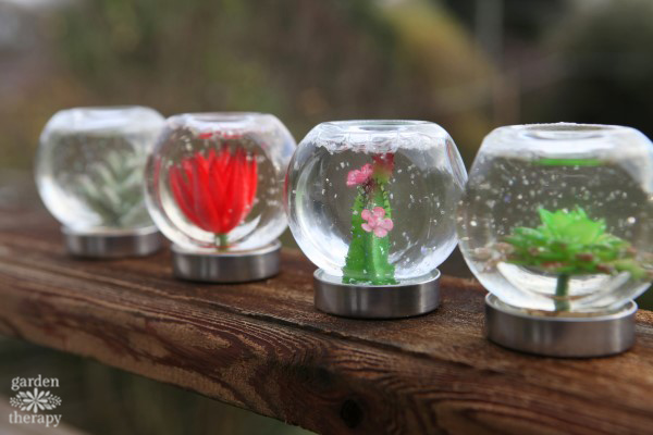 Succulent snow globes are the perfect decorations for plant lovers. Make these DIY decorations from easy-to-find materials and enjoy the garden all year.