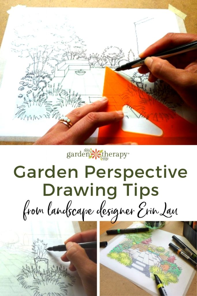 Garden Perspective Drawing Tips from Landscape Designer Erin Lau