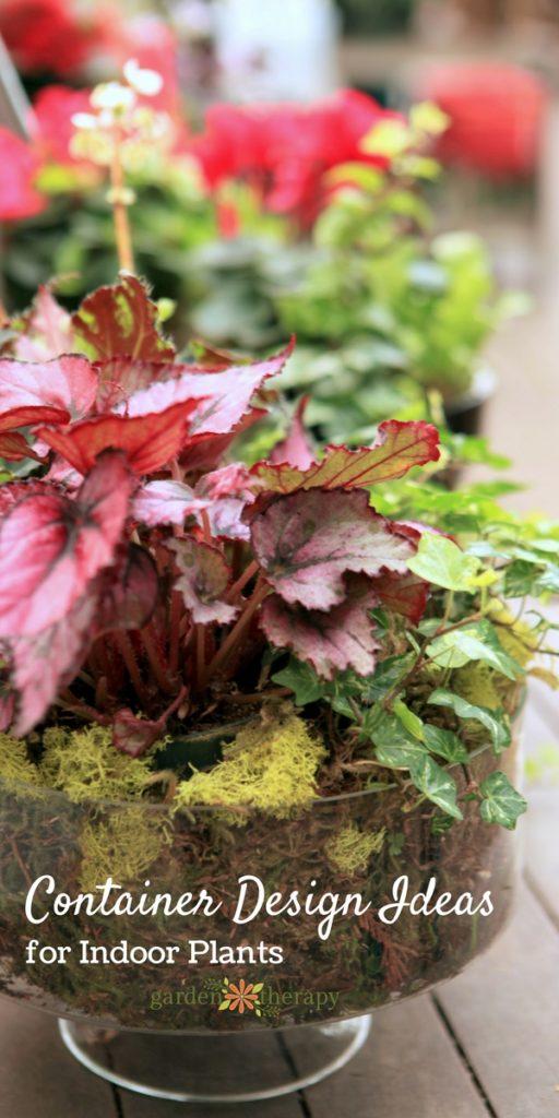 indoor plant arrangements tips and ideas