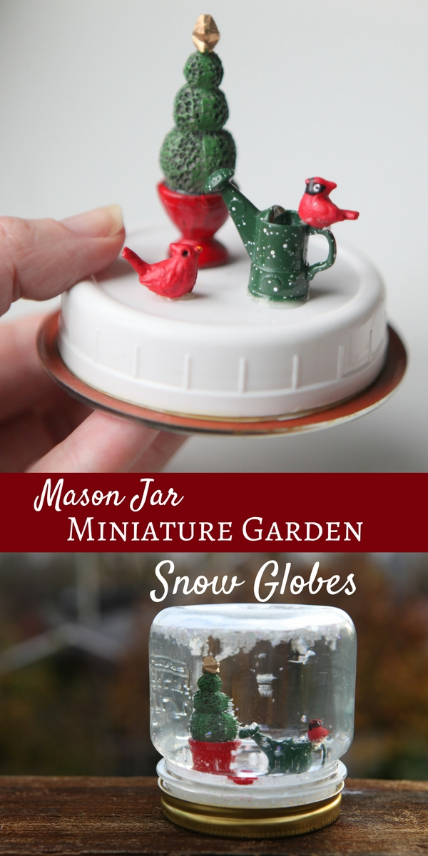 Three awesome things - Mason jar + miniature garden + snow globe all in one!