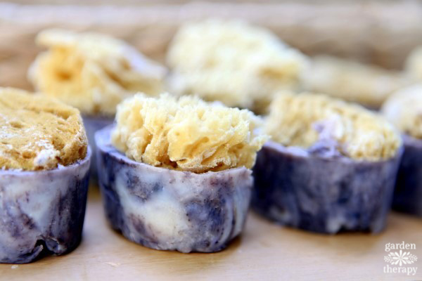 Learn how to make organic-looking handmade sea sponge soap topped with natural sea sponges for a gorgeous soap that lathers up beautifully.