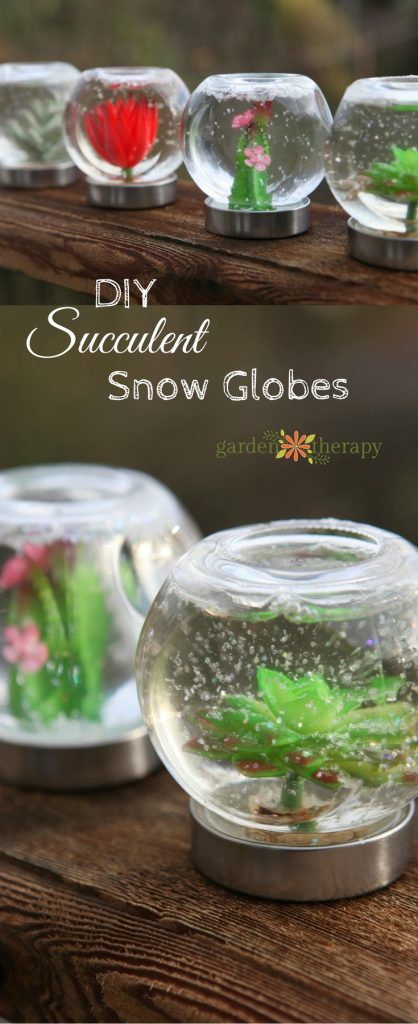 How to make these adorable succulent snow globes!