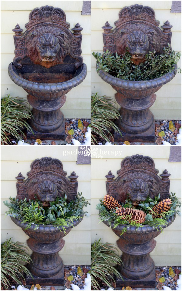 plant a fountain for winter