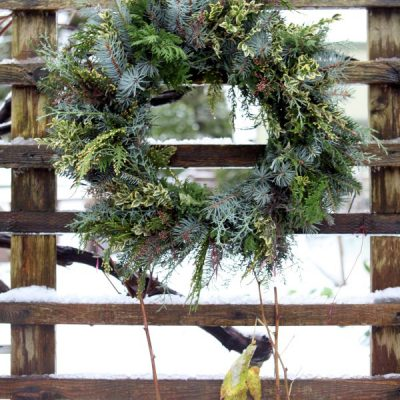 Experience Nature: Make a Fresh Foraged Wreath