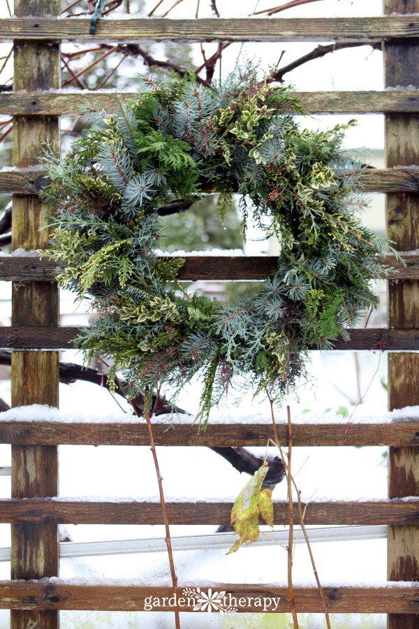 Evergreen wreath on wire frame by Garden Therapy