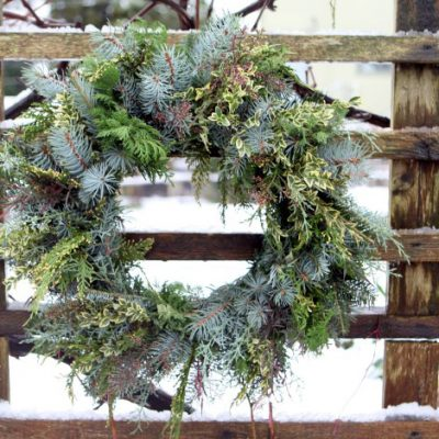 Happy Holidays from Garden Therapy!