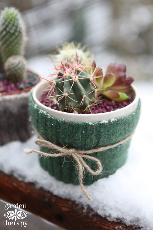 How to make these cute Felted Cactus Sweaters
