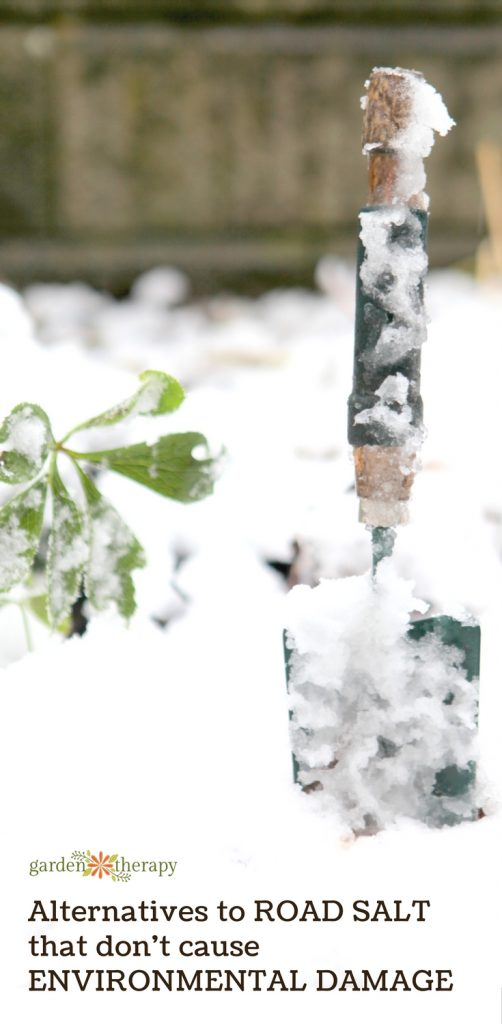 Save Your Garden from Road Salt Environmental Damage this Winter