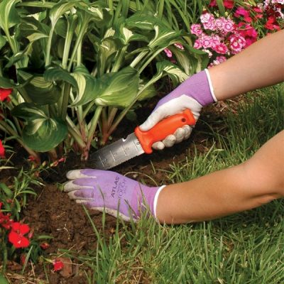 10 Genius Gardening Tools That Will Change the Way You Garden Forever