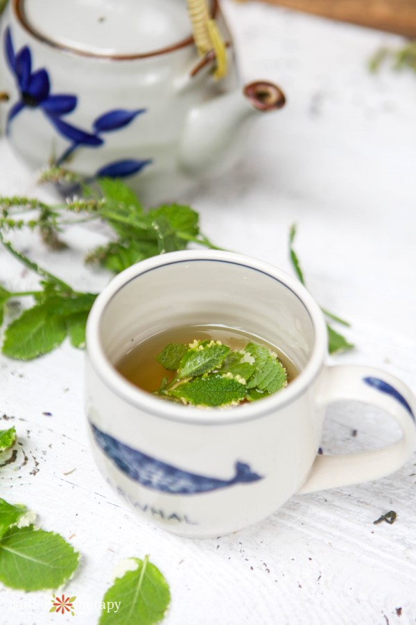 mug of tea with fresh herbs