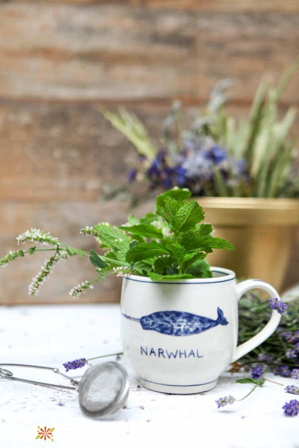 mug with fresh herbs for making tea