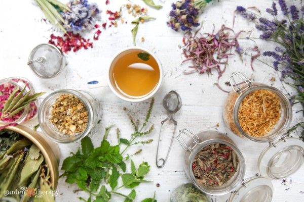 a cup of tea on a table full of fresh and dried herbs and flowers