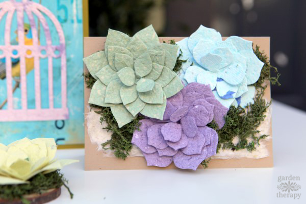 Seed paper succulents greeting card
