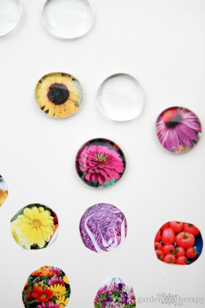 Creative Upcycling with DIY Seed Catalog Magnets