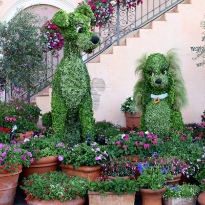 Tour the Disney Topiaries at the Epcot International Flower and Garden Festival