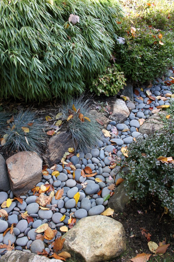 a dry creek bed designed to catch runoff