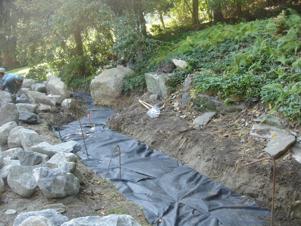 Preparing a space for a diy dry creek bed with ground cover